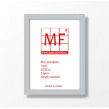 Marco Diploma Plástico Aluminio  22x28 (carta)
